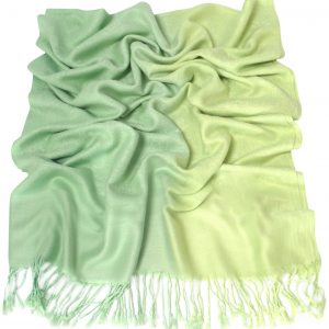 Green Two Tone Design Pashmina Shawl Scarf Wrap Pashminas Shawls NEW a3040-213