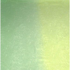 Green Two Tone Design Pashmina Shawl Scarf Wrap Pashminas Shawls NEW a3040-505